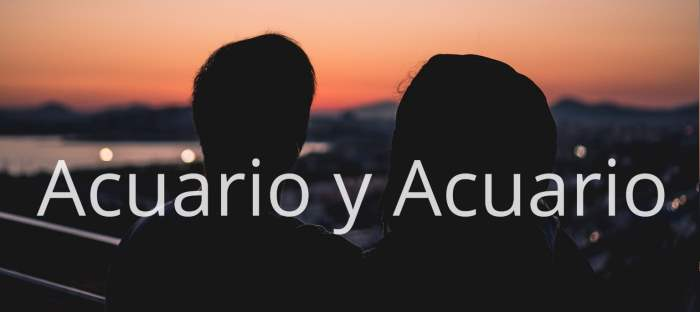 Compatibilidad entre Acuario y Acuario