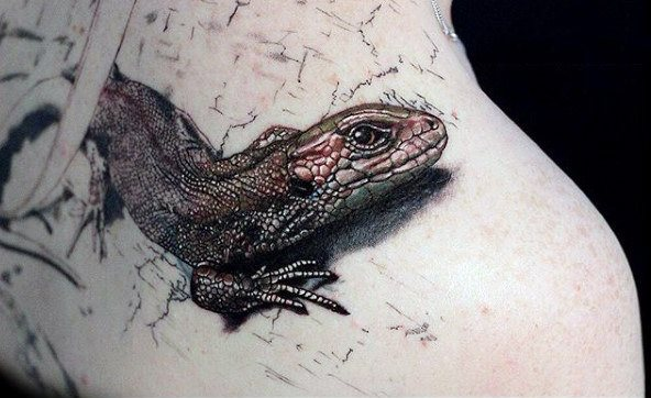 tatuaje lagarto para hombre 13