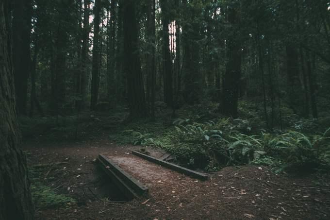 obscuridad 01
