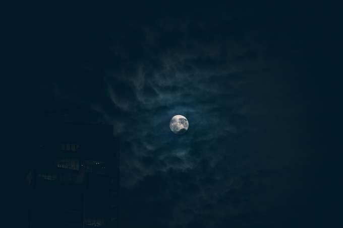 Soñar con murciélagos ¿Qué significa?